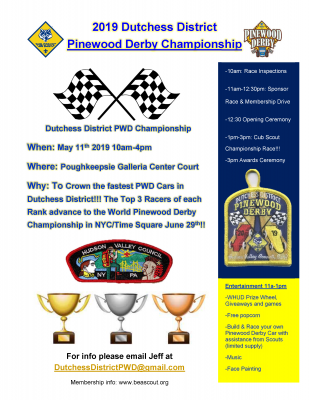 Cub Scout PWD Flyer