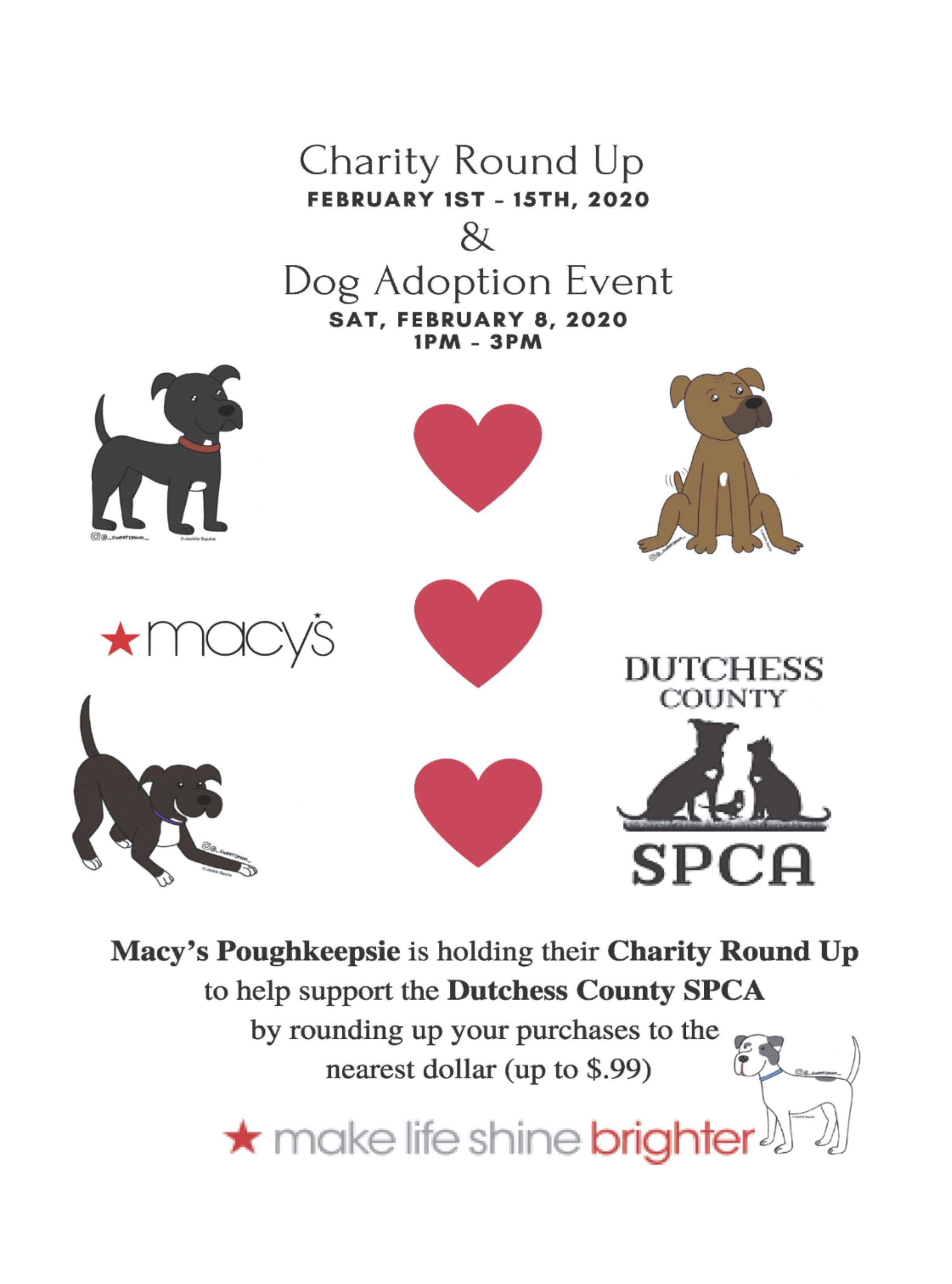Macys adoption event